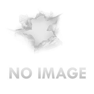 Birchwood Casey 47604 World of Targets Double Hole Black Gong w/Orange Target AR500 Steel